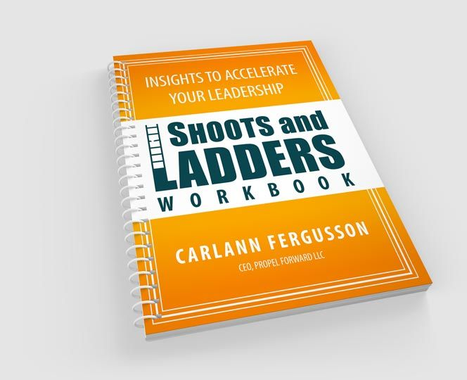 Shoots and Ladders book Image
