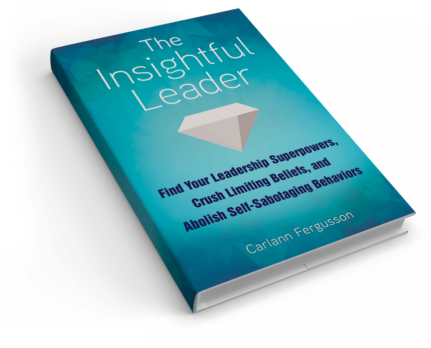 Insightful leader book Image